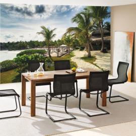 Fotobehang poster 4486  strand palmbomen rieten parasol