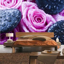 Fotobehang poster 1608 bloem rozen roos met zwarte stenen
