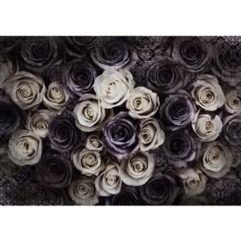 Fotobehang poster 0910 bloemen rozen roos vintage