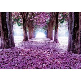 Fotobehang poster 0722 bomen roze bloemen blauw