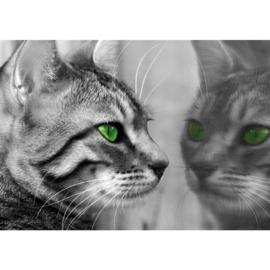 Fotobehang poster 1826 kat raam dier groene ogen zwart wit poes