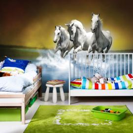 Fotobehang poster 1014 dieren witte paarden blauw