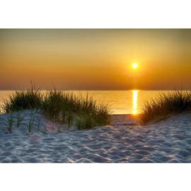 Fotobehang poster 4577  strand duinen zee zand
