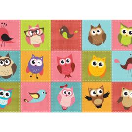 Fotobehang poster 2090 kinderkamer uil vogels patchwork