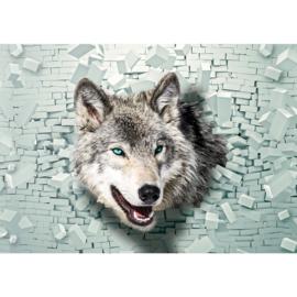 Fotobehang poster 1387 dieren honden husky wolf blauwe ogen stenen muur