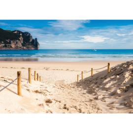 Fotobehang poster 2662 strand duinen zee rotsen zandpad