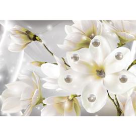 Fotobehang poster 1773 bloemen magnolia parels planten