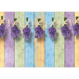 Fotobehang poster 1844 hout planken lavendel paars groen blauw geel
