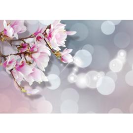 Fotobehang poster 0976 bloemen orchidee