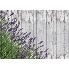 Fotobehang poster 1755 hout grijs bloemen lavendel