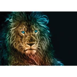 Fotobehang poster 1547 dieren leeuw roofdier licht reflectie