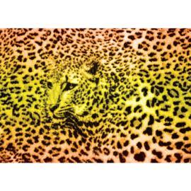 Fotobehang poster 1391 tijger print tijgerkop dierenhuid tijgervel
