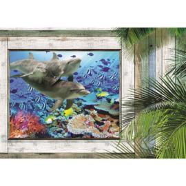 Fotobehang poster 1319 uitzicht uit houten raam naar dolfijnen onderwater vissen