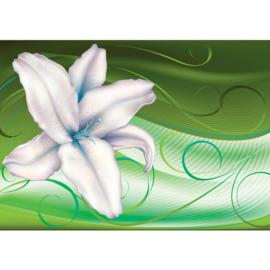 Fotobehang poster 1565 bloemen orchidee wit