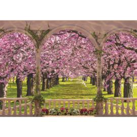 Fotobehang poster 1822 bomen bos pad planten bloemen natuur