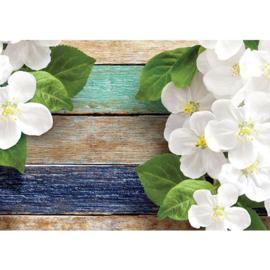 Fotobehang poster 2115 bloemen orchidee planken blauw