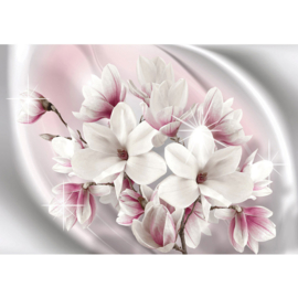 Fotobehang poster 0877 bloemen wit roze planten ster