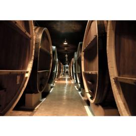 Fotobehang 58 wijnvaten wijnkelder