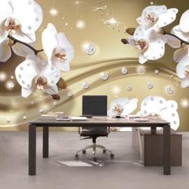 Fotobehang poster 0686 orchidee wit diamant beige