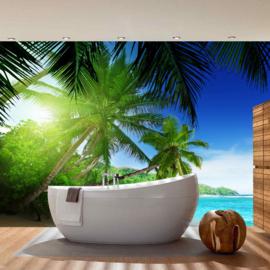 Fotobehang poster 0005 natuur strand palmboom bomen