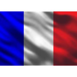 Fotobehang 3103 Frankrijk vlag