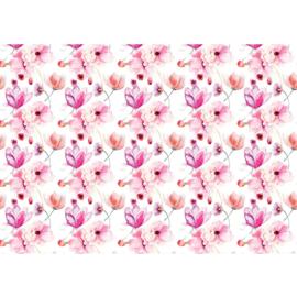 Fotobehang poster 2041 bloemen rozen roze