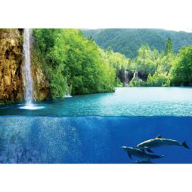 Fotobehang poster 2043 dieren dolfijn aquarium waterval glazen wand