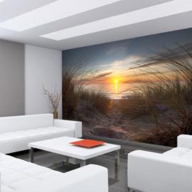 Fotobehang poster 0074 natuur strand noorzee duinen zonsondergang