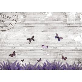 Fotobehang poster 1994 hout grijs vlinder