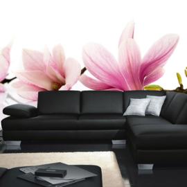 Fotobehang poster 0202 bloemen orchidee roze