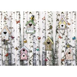 Fotobehang poster 4317 vogelhuis vogels vlinder bomen berken