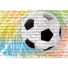 Fotobehang poster 1356 voetbal muur