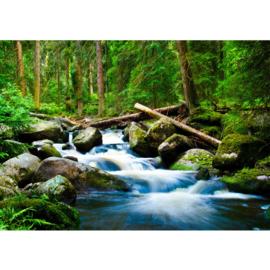 Fotobehang poster 0031 rotsen waterval bos natuur