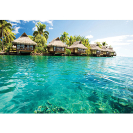 Fotobehang poster 0645 zee blauw water huisjes hutjes palmbomen