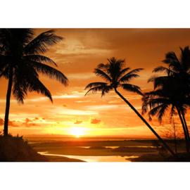 Fotobehang poster 2590 zonsondergang palm strand tropisch