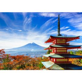 Fotobehang poster 0261 japan tokio tempel bergtop