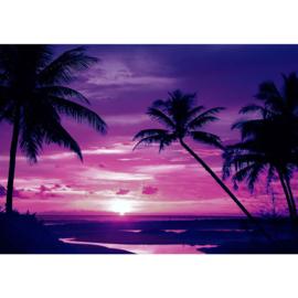Fotobehang poster 1950 palm zonsondergang lila paars tropisch