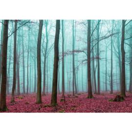 Fotobehang poster 0818 bomen herfst bos blaadjes
