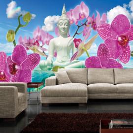 Fotobehang poster 0589 bloemen orchidee roze boeddha water