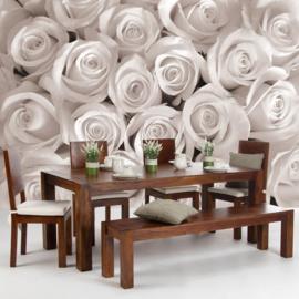 Fotobehang poster 1232 bloemen rozen roos wit