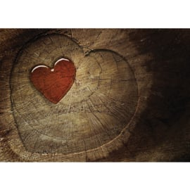 Fotobehang poster 0332 hout hart bruin