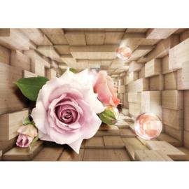 Fotobehang poster 0972 bloemen rozen roos
