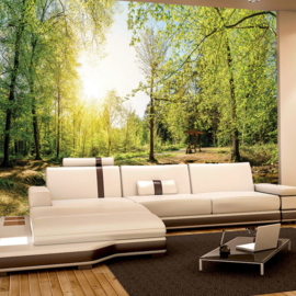 Fotobehang poster 3350 bomen vlakte bos groen natuur rotsen
