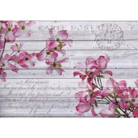 Fotobehang poster 1778 bloemen hout grijs roze