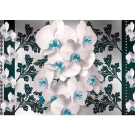Fotobehang poster orchidee planten bloemen patroon