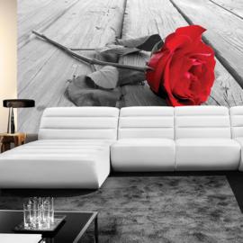 Foptobehang poster 2558 bloemen rozen roos steigerhout