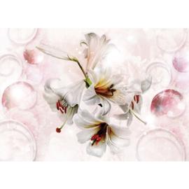 Fotobehang poster 2690 bloemen stamper roze