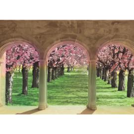 Fotobehang poster 1301 bloemen kers uitzicht op boomgaard bogen en pilaren