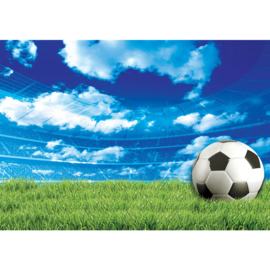 Fotobehang 2805 poster voetbal gras