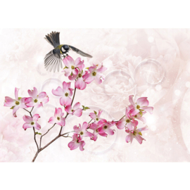 Fotobehang poster 2691 dieren koolmees bloemen roze